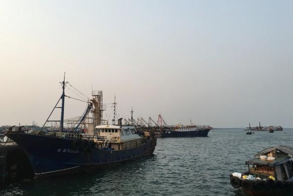 東海沒有魚...中國擬增加遠洋漁船捕撈量 外媒憂加劇衝突 - 國際 - 自由時報電子報