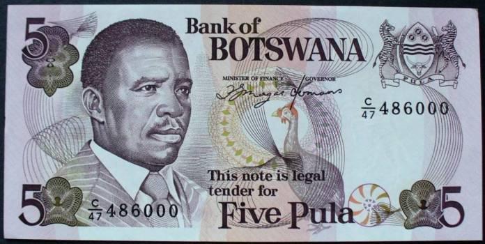 Image result for 5. Botswana's Pula