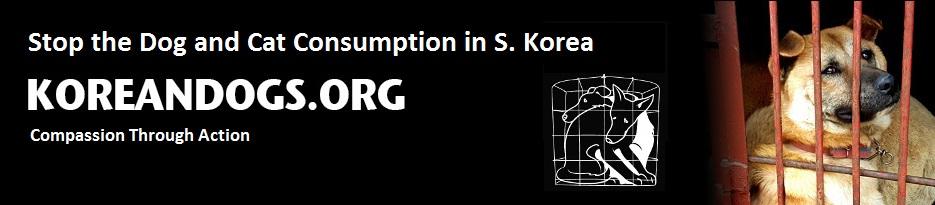 koreandogs.org