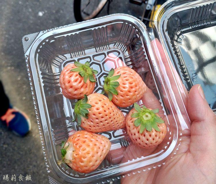 日本自助|春、冬兩季 到日本嗑草莓的最好時刻