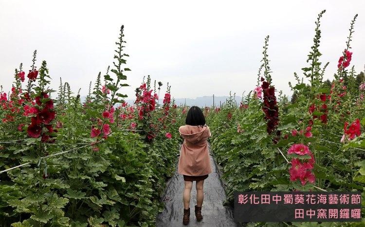 彰化輕旅行|2019年田中蜀葵花海藝術節 來田中窯賞花玩陶土 親子旅遊推薦