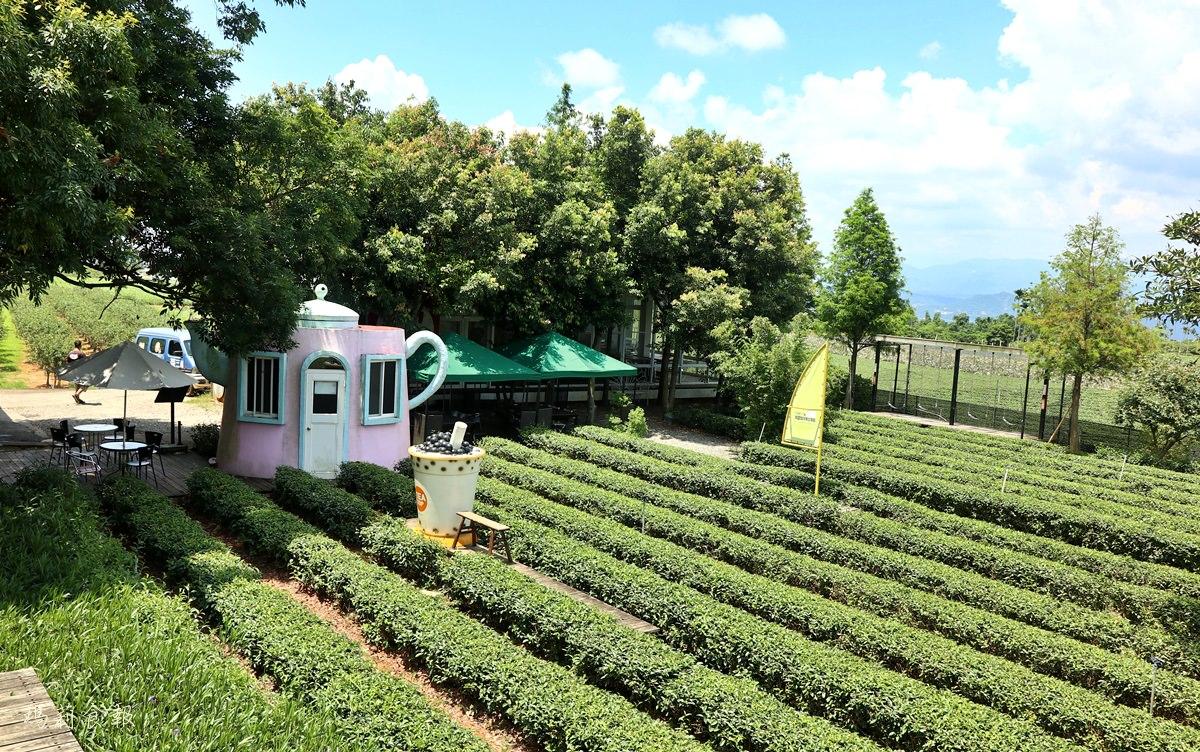 南投名間景點,茶二指故事館,茶葉博物館,巨無霸珍奶水管屋,好玩好拍,享受慢活的南投小旅行,認識茶類文化好選擇