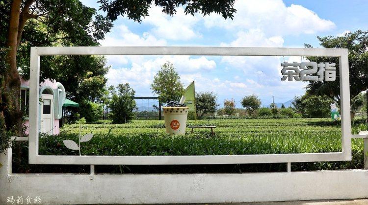 南投名間景點|茶二指故事館 綠油油茶園 巨無霸珍奶 水管屋好玩好拍又能享受慢活