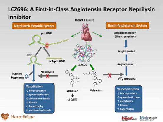 Inibidores da Neprisilina