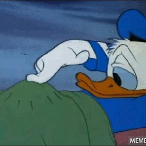 Thanks I Hate Donald Duck S Fisting Erection Duck Meme On