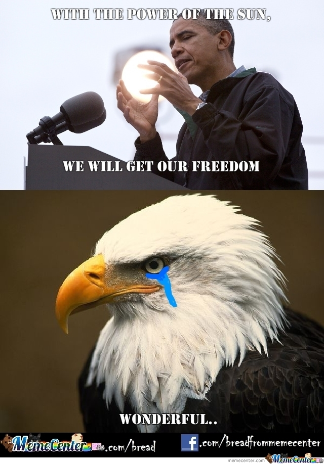 Eagle Memes Best Collection Of Funny Eagle Pictures