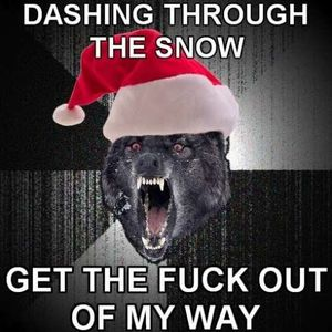 Image result for merry fucking christmas