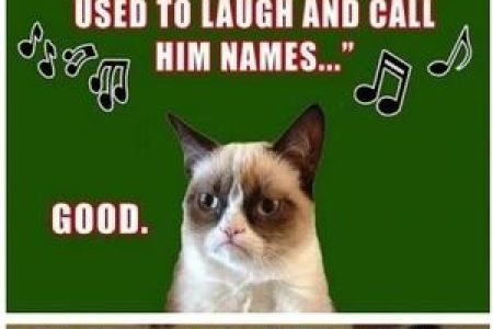 funny animal christmas quotes funny quotes funny animals funny animal christmas quotes funny quotes funny animals grumpy cat inspirational quotes awesome