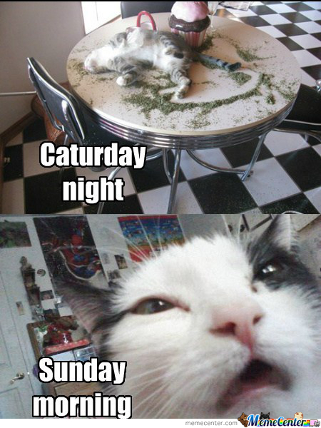 Not On The Weekends Memes Best Collection Of Funny Not On The