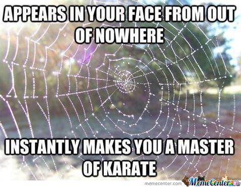 Spider S Web Are Awesome By Helmi Metalhead Meme Center