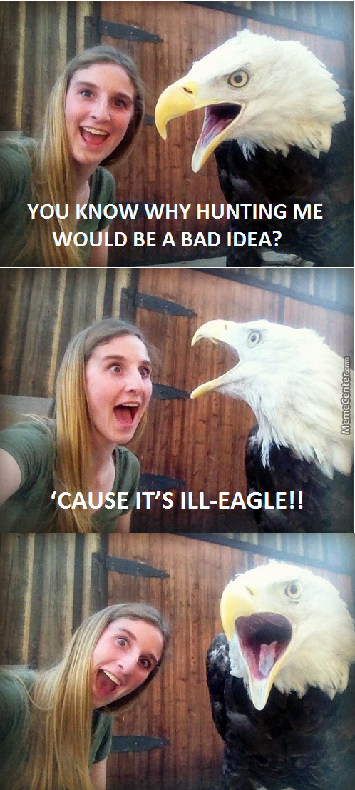 Eagles Memes Best Collection Of Funny Eagles Pictures