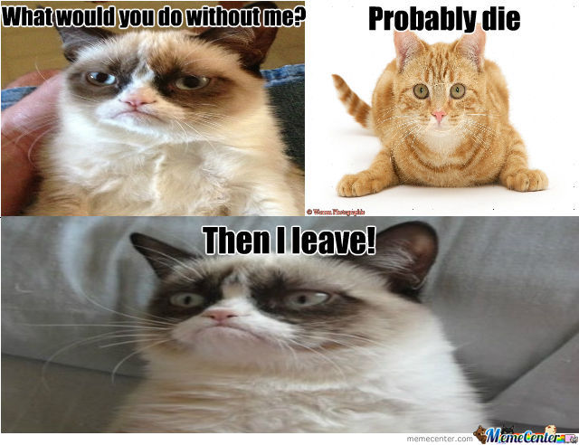 What Would You Do Without Me By Amit Katzman 1 Meme Center
