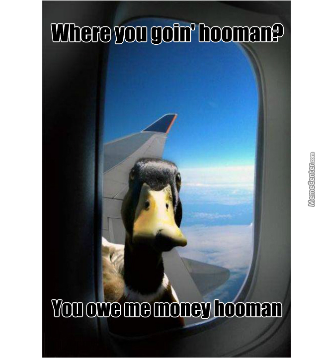 When That Duck You Owe Money Finds You By Thatrandomdude123