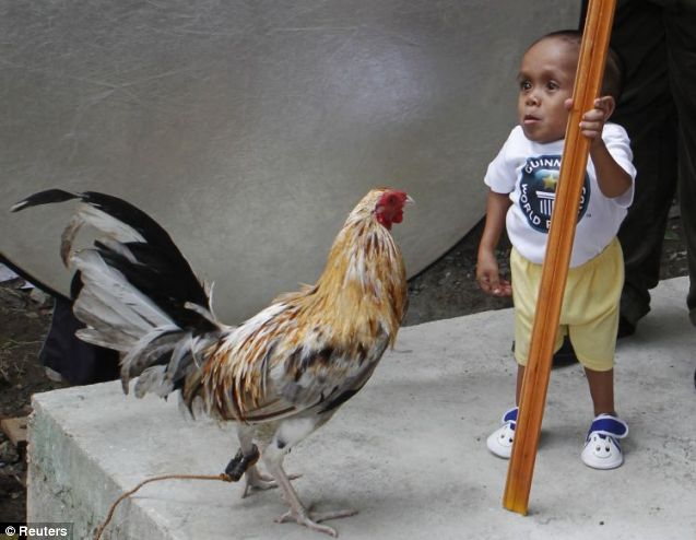 Measuring up: Junrey Balawing is just a little latter than a rooster