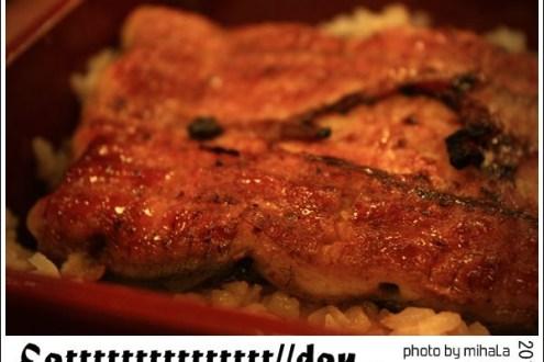 台北》中山站肥前屋 大排長龍必吃鰻魚飯