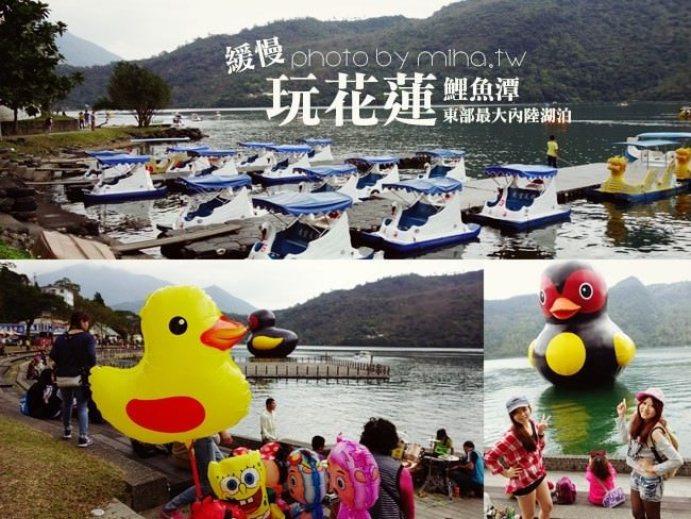 花蓮 ▌黃色小鴨大變身:花蓮鯉魚潭紅面番鴨跟你一起從新年玩到元宵