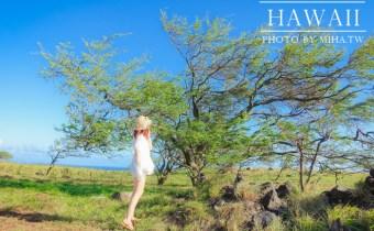 夏威夷》跟著當地導遊來一趟茂宜島環島mini tour 一覽全島風景