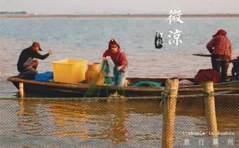 蘇州》陽澄湖補大閘蟹刺激又好玩 無敵幸運的初體驗 大閘蟹真的超好吃