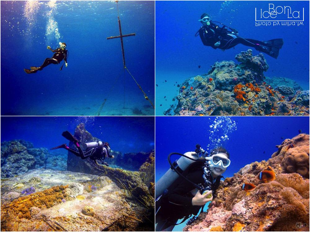 台灣潛水推薦,潛水景點,綠島潛水,小琉球潛水,蘭嶼潛水,墾丁潛水,潛立方