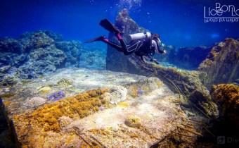 在台灣潛水完全不輸國外!6大台灣知名潛水地點經驗分享