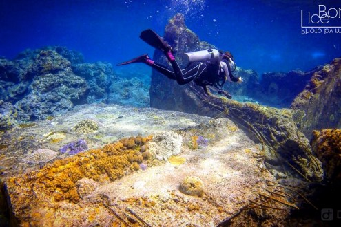 台灣潛水推薦清單!綠島墾丁蘭嶼小琉球 北海岸6大台灣知名潛水地點經驗分享 在台灣潛水完全不輸國外