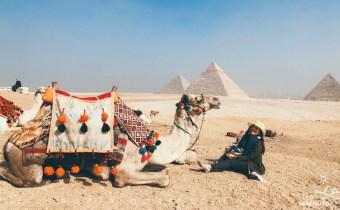 埃及旅遊攻略》12天埃及行程超深度之旅 埃及簽證航班吃喝玩樂行前必看