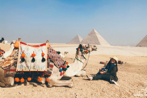 埃及旅遊攻略》埃及跟團才好玩!埃及簽證航班吃喝玩樂行前必看