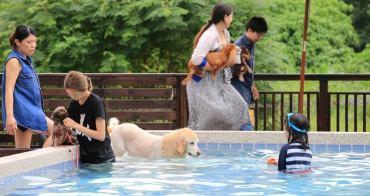 【台中寵物餐廳】Boss Dog 博斯逗狗樂園:途兒咖啡旁的毛小孩天堂~ 游泳池、大草皮、時下最夯貨櫃屋餐廳。奔跑吧!狗狗~