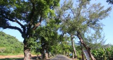 【花蓮景點】武陵綠色隧道 x 五彩饅頭店:全程不到5公里,樟樹與木麻黃的林蔭車道,彩色花饅頭好吸睛