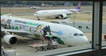 【長榮航空彩繪機】台北TPE>福岡FUK,A330經濟艙/飛機餐/WIFI價位