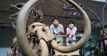 【台南景點】臺南左鎮化石園區(附交通票價):五館制霸攻略,台灣唯一化石主題博物館