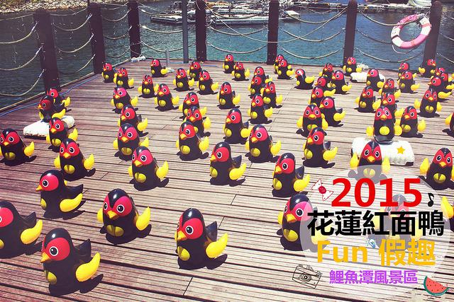 花蓮壽豐景點 | 鯉魚潭風景區 2015花蓮紅面鴨Fun假趣 2015/07/18 ~ 2015/08/30