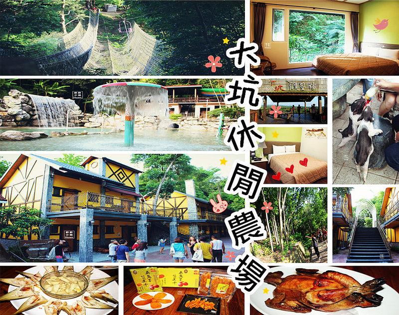台南新化景點 大坑休閒農場 一段雞場到夢想農場的故事