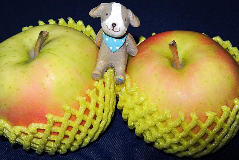 團購美食   鮮果日誌 注目新品種 青森空運朱鷺蘋果初體驗