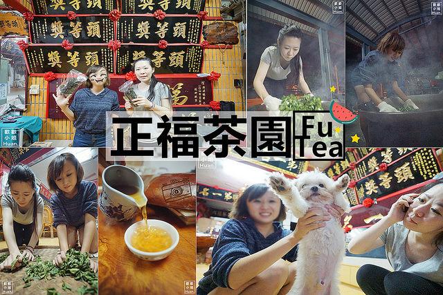 宜蘭冬山景點 | 正福茶園 製茶體驗 台灣在地生產 生態永續經營茶園 通過有機及履歷嚴格檢驗