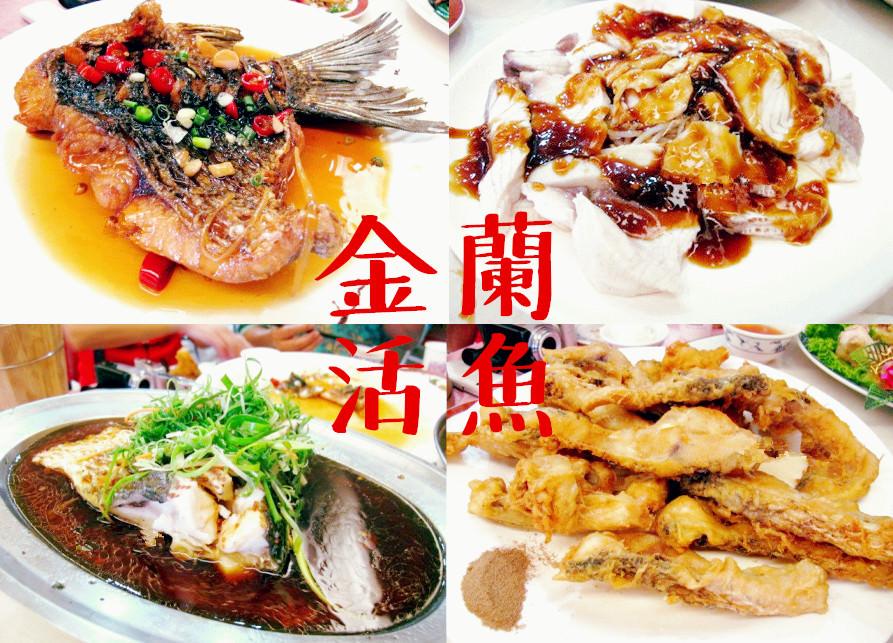 桃園龍潭美食 | 金蘭活魚 石門活魚三吃 石門水庫 多人合菜
