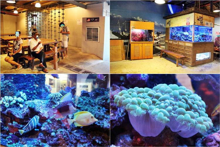 花蓮新城景點   七星柴魚博物館 超美七星潭就在旁邊 免費參觀 周休二日親子同遊好去處 特色伴手禮超好逛