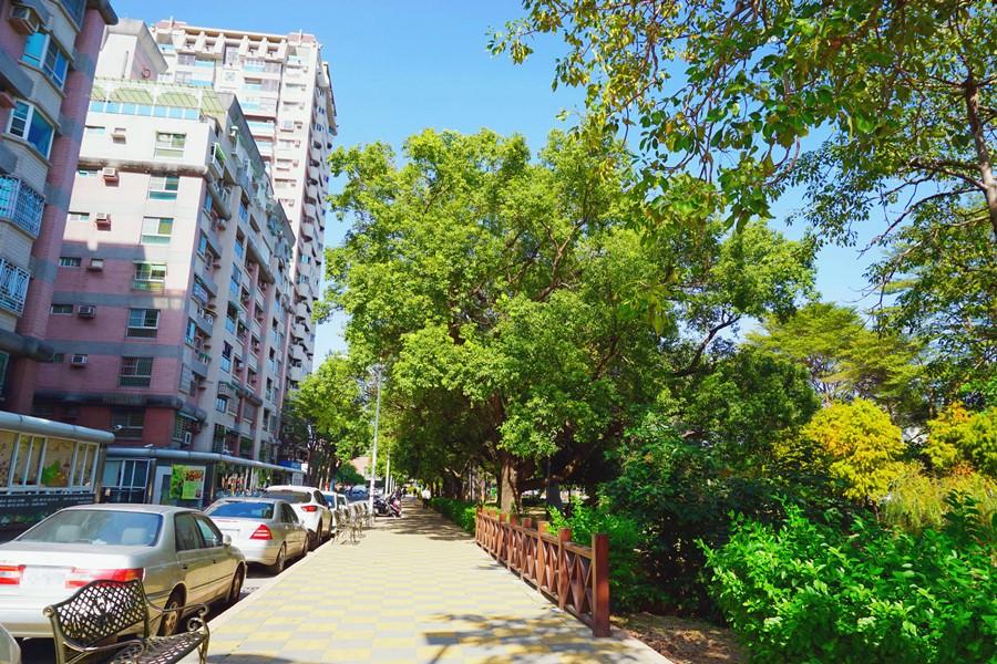 台南東區景點 巴克禮公園 紀念英籍巴克禮牧師而命名 滿滿文藝氣息的公園 絕美落雨松與碧綠池塘