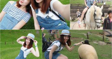 清境旅遊▌天啊!我在清境拍照拍瘋了♥♥到「清境農場」必看綿羊秀(清境綿羊秀時間)