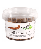 CRUNCHY CRITTERS Buffalo Worms 20g