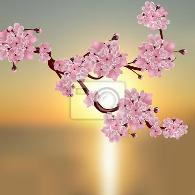 Cerise Japonaise Luxuriante Une Branche De Fleur De Cerisier Papier Peint Papiers Peints Petales De Fleurs Belle Realiste Myloview Fr