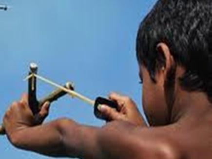 Jabalpur Rani Durgavati University Students will plant saplings with the  help of catapult