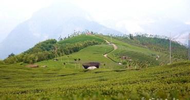 嘉義梅山》碧湖山觀光茶園。隱藏山中360度美景不藏私,絕美無敵景色如畫,美的像明信片