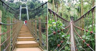 「雲林華山景點」華山小天梯(華山溪吊橋)/華山情人吊橋。一次僅能二人通過的情人吊橋,仿佛穿梭叢林。