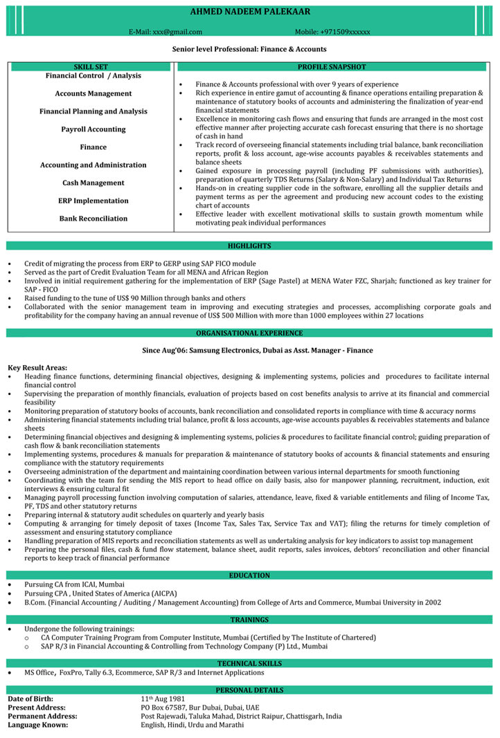 ca articleship resume