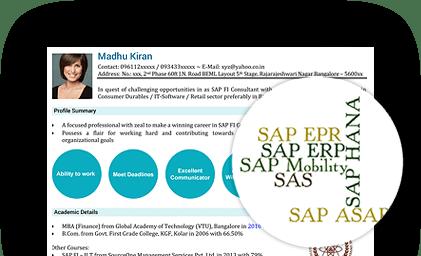 visual resume writing for experienced professionals naukri com