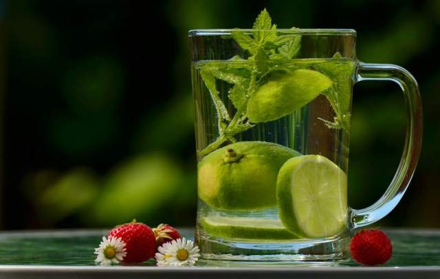 Lemon And Mint In Water. Photo Pixabay