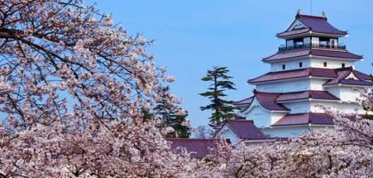 【福島】鶴之城(會津若松城)日本賞櫻名城 大河劇『八重之櫻』拍攝場景