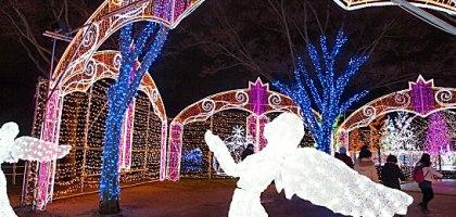日本最大!2015大阪城3D聲光秀 內含優惠折價券