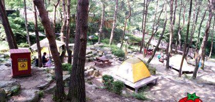 韓國、大邱 香草之丘Hill crest  ,露營、運動探險、遊樂區一次滿足